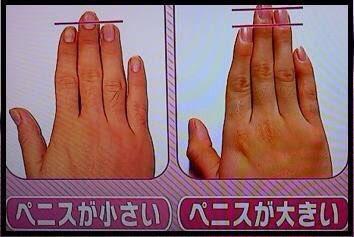 仕事ができる男性の薬指と人差し指を見てみよう